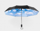 Moma Umbrella