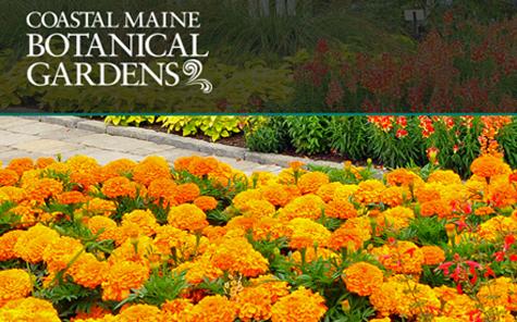Coastal-Maine-Botanical-Garden-header