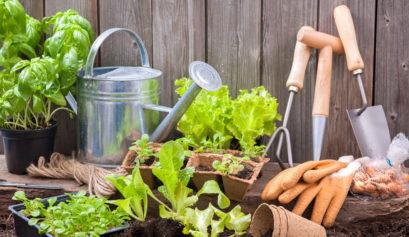 Gardening-Equipment-head
