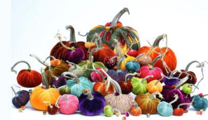 velvet-pumpkin-header-image