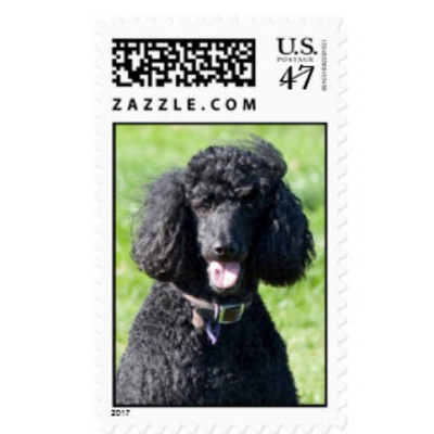 Tech for pets, postage stamps