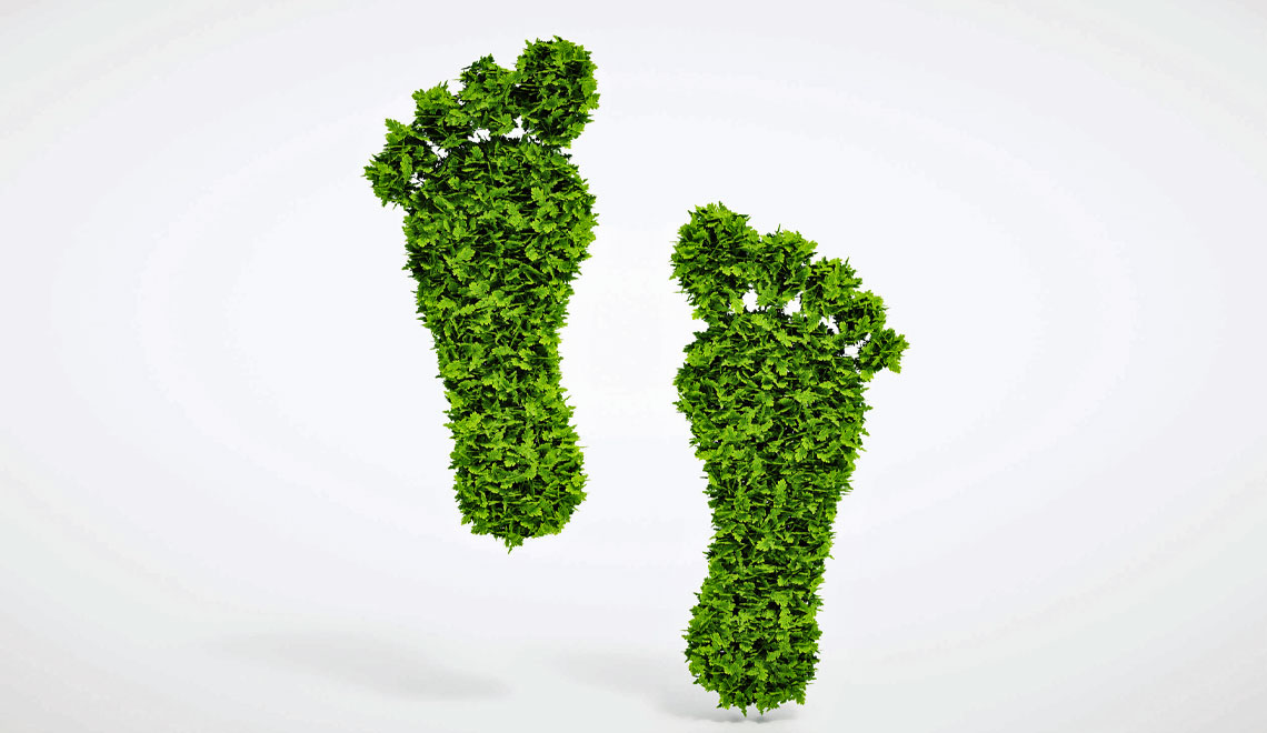 Update on Calculating Your Carbon Footprint and Actions to Take